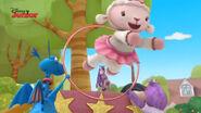 Lambie jumps through the hoop