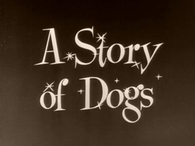 File:1954-dogs-1.jpg