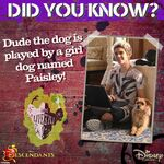 Did You Know - Dude