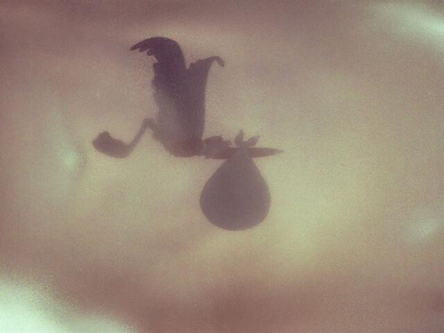 File:Dumbo-disneyscreencaps.com-560.jpg