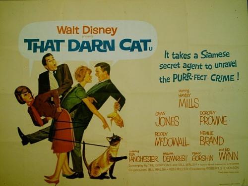 File:THAT DARN CAT RR.jpg