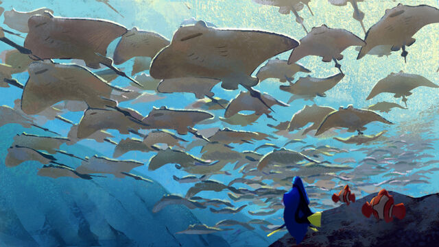 File:Finding Dory Concept Art 4.jpg