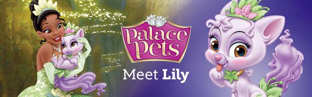 File:Palace Pets Lily.jpg