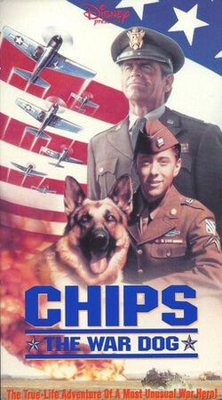 1990-chips-1