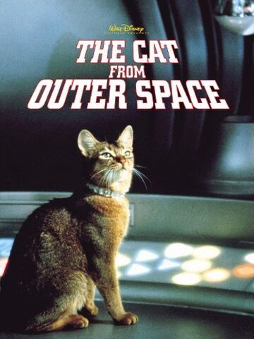 File:Cat from outer space.jpg