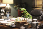 Kermit's office 2015