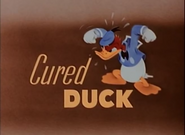 Cured duck title card