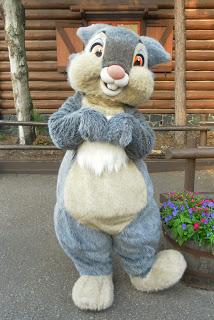 File:Latest Thumper.jpg