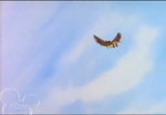 Winniepedia owl feathers yeah
