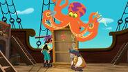 Octopus13