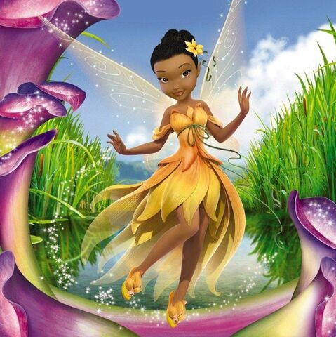 File:Disney-Fairies-Redesign-disney-fairies-34698208-747-748.jpg