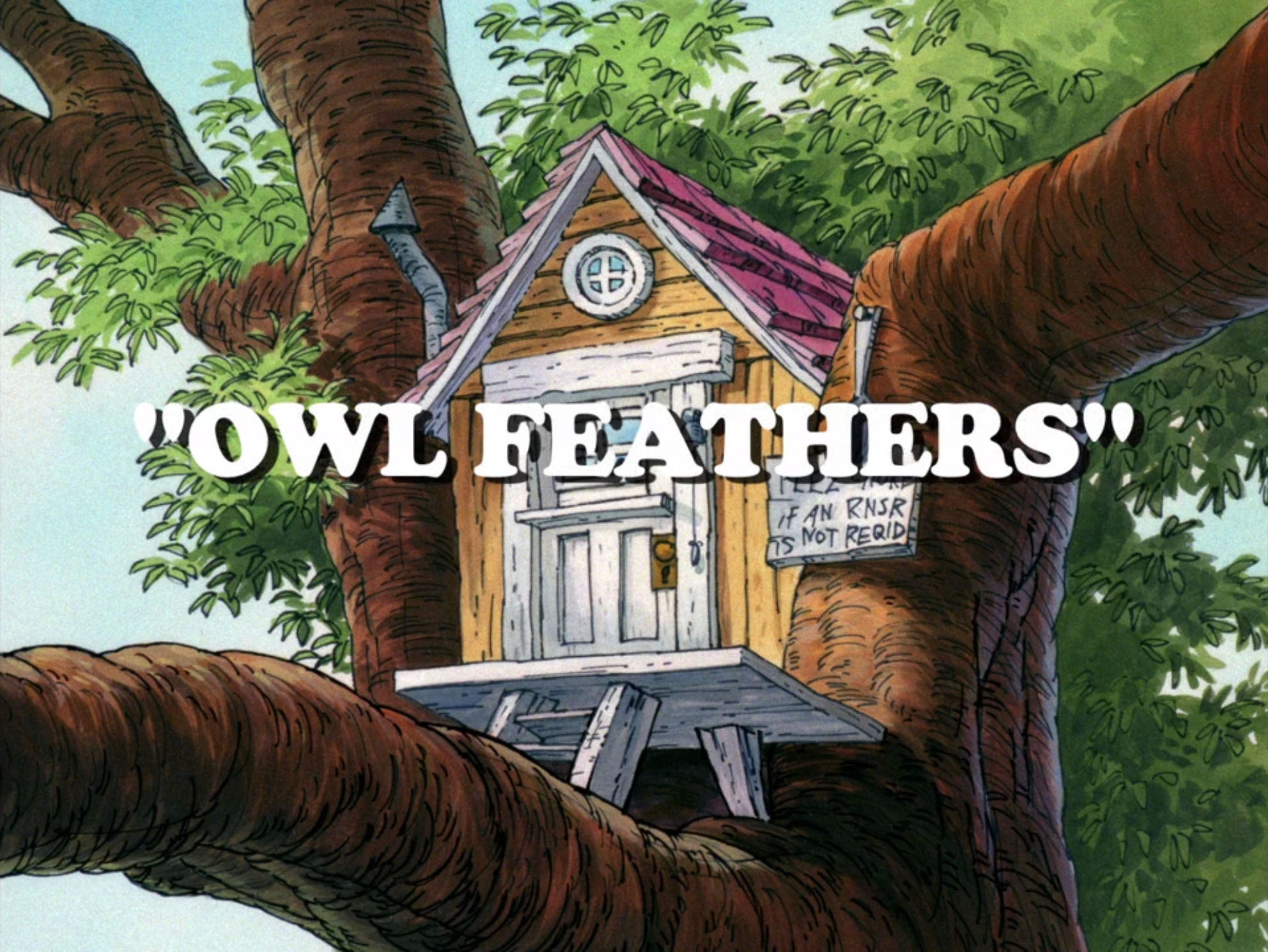 File:Owl Feathers.jpg