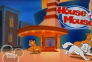 House Of Mousedogsandcats2