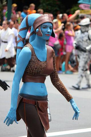 File:AAYlA SECURA Disney Parck.jpg