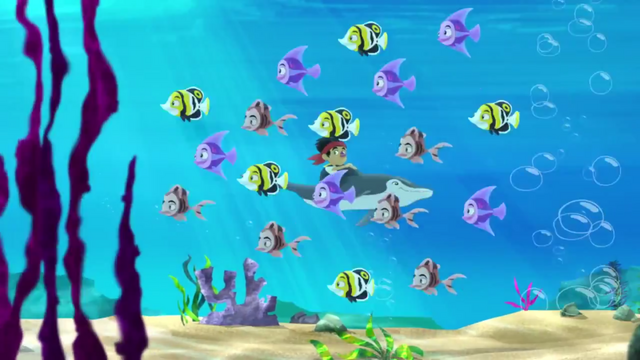 File:Fish in hurry.png