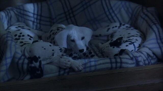 File:102-dalmatians-disneyscreencaps.com-6724.jpg