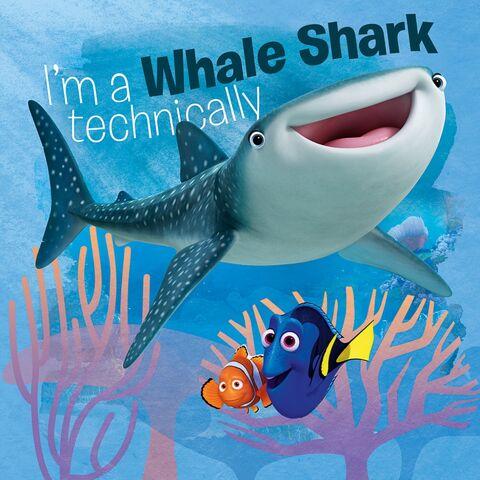 File:Shark Destiny.jpg