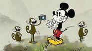 Monkey camera snatching