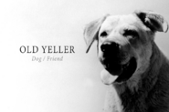 Old-yeller-lead