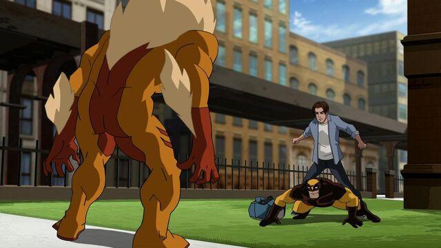 File:Ultimate-spider-man-sabertooth-Spiderman-Wolverine.jpg
