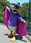 Darkwing Duck Disneyland