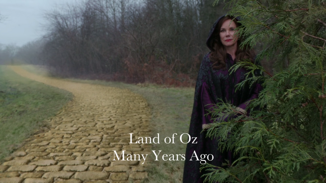 File:Once Upon a Time - 5x19 - Sisters - Oz.png