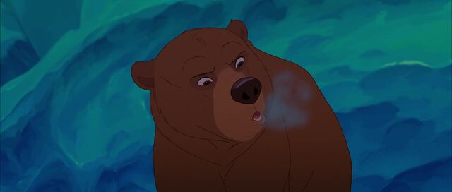File:Bear 6.jpg