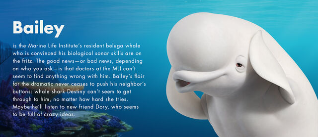File:Finding Dory Character Profiles 06.jpg