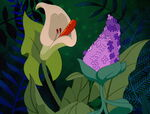 Alice-in-wonderland-disneyscreencaps.com-3541