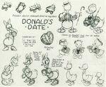 Donald date models