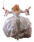 Fairy godmother picture