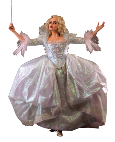 File:Fairy godmother picture.png