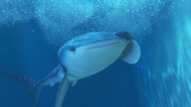 File:Finding Dory 74.png