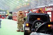 TheMuppets-WorldPremiere-ElCapitan-(2011-11-12)-09