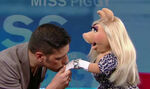 Kiss George Stroumboulopoulos Piggy