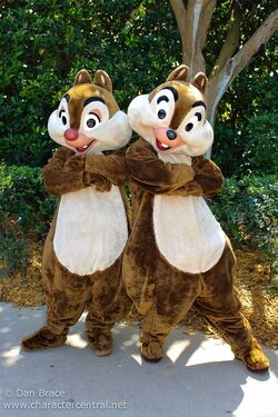 Chip and Dale Character Central