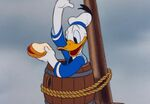 Mickey-and-Friends Donald-Duck Food