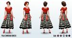 CincoDeMayo - Folk Dancing Dress