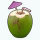 SailingLessons - Coconut Drink