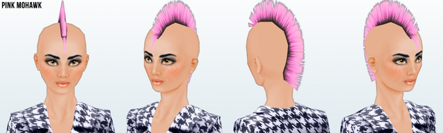 File:Career - Pink Mohawk.png