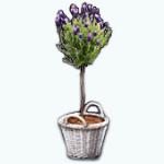 TheVault - Flowering Tree