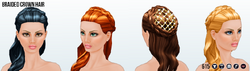 RenFaire - Braided Crown Hair