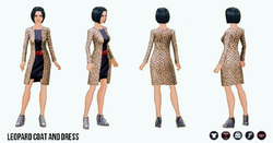 PrettyWardrobe - Leopard Coat and Dress