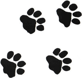 PAW PRINTS small