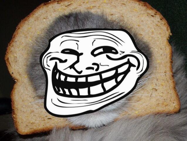 File:Breadcatroll.jpg