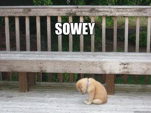 File:Puppy!.jpg