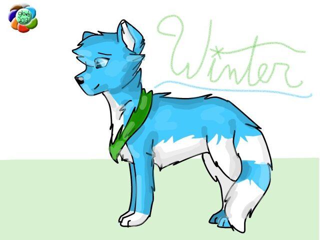 File:- Winter -.jpg