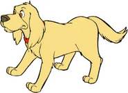 IPB Brandon the Dog