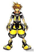 Sora Master