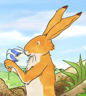 Big Nutbrown Hare